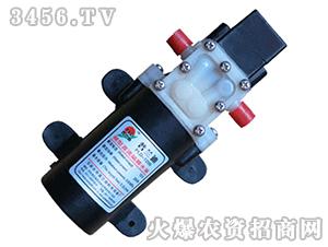 微型水泵-压力开关-直口型-普兰迪