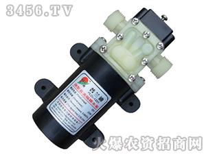 微型隔膜水泵-溢压回流(大螺纹)-普兰迪