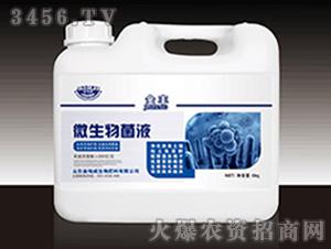 微生物菌液-金丰-金地
