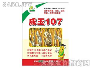 玉米种子-成玉107-同路农业
