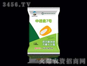 中德麦7号-小麦种子-德合坤元