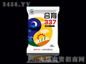 合育337-玉米种子-德合坤元