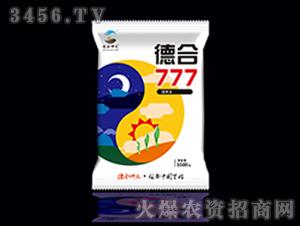 德合777-玉米种子-德合坤元