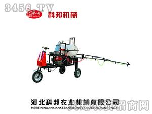 3DYJ-250型(8马力)后驱式打药机-帮大哥-科邦机械