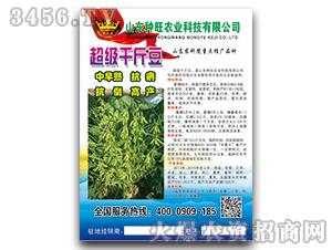 超级千斤豆-大豆种子-种旺农业