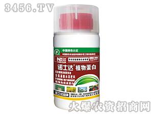 含氨基酸水溶肥-植物蛋白-诺士达
