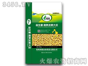 益生菌腐熟发酵大豆-鸿图