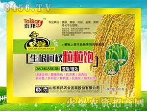 微量元素水溶肥料-增产抗倒麦黄金-泰邦