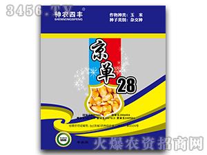 京单28(蓝袋)-玉米杂交种-神农种业