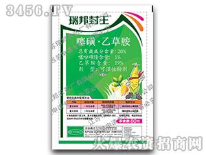 20%噻磺·乙草胺可湿性粉剂-瑞邦封王