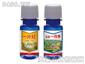甲氨基阿维菌素苯甲酸盐杀虫剂-创美实