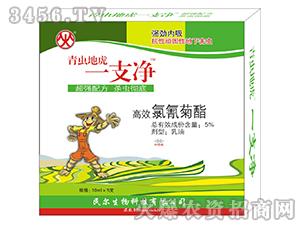 5%高效氯氰菊酯乳油-青虫地虎一支净-民尔生物