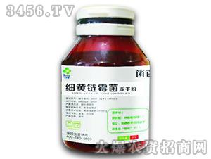 细黄链霉菌-康柏叶盛