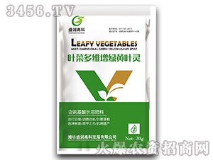 叶菜多维增绿黄叶灵-盛