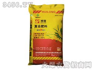 复合肥料19-10-17-辉隆肥业