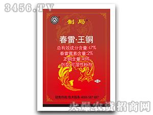 春雷・王铜可湿性粉剂-