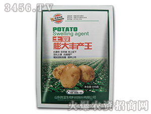 土豆膨大丰产王-胜蓝科