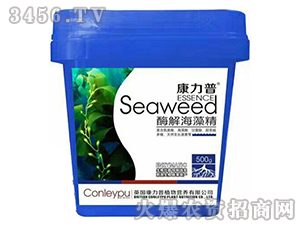 酶解海藻精-康力普-中农博润