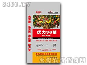 微生物菌剂-优力36菌-普创化肥