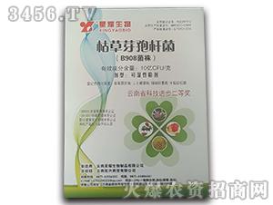 枯草芽孢杆菌-B908菌株-拓兴商贸