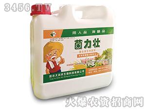 复合微生物菌剂-菌力壮-大润禾