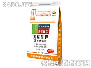 黄腐酸钾双效水溶肥-鸿福叶芭-永恒生物