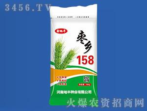 15kg枣乡158-小麦种子-地丰种业