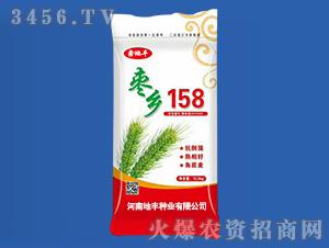 枣乡158-小麦种子-地丰种业