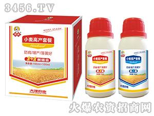 小麦高产套餐-大泽农业