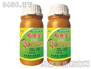水稻控旺增长剂-稻田宝