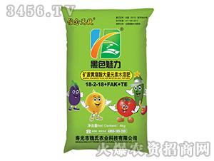 矿源黄腐酸大量元素水溶肥料18-2-18+FAK+TE-黑色魅力