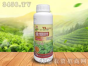 金烟叶-鑫禾生物
