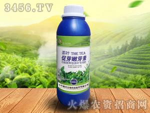 促叶嫩芽素-鑫禾生物