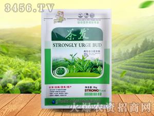 茶发-鑫禾生物