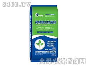 黄腐酸生物菌剂-冬阳-肥力特