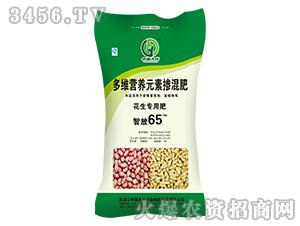 多维营养元素掺混肥-智放65-中亚大化
