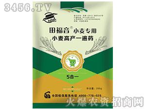 小麦专用调节剂-田福音-瑞邦化工