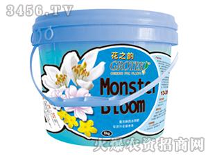 能抗病的水溶肥料13-35-12+TE(桶装)-花之韵-格鲁克