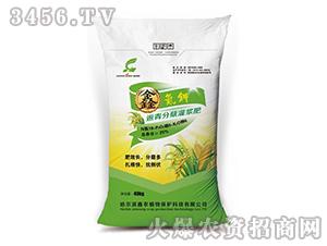 返青分蘖灌浆肥-鑫氮钾追肥-鑫农植物