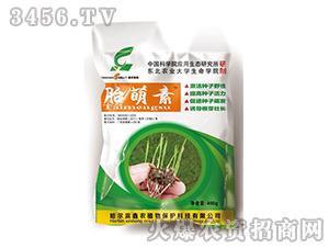 胎萌素-鑫农植物