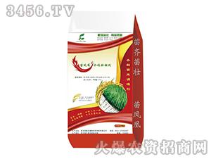 水稻壮秧剂-苗凤凰-鑫农植物