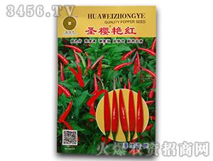 圣樱艳红-辣椒种子-华为种业