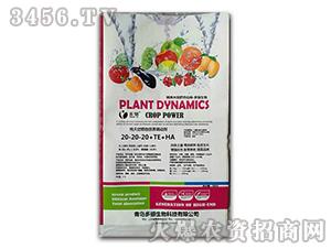 纯天然植物营养调动剂20-20-20+TE+HA-多骊