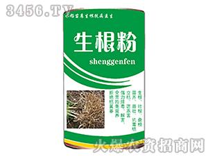 水稻苗床专用生根粉-盛