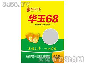 玉米种子-华玉68-豫神农业