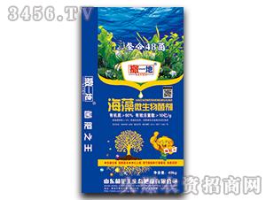 海藻微生物菌剂-撒一地-菌肥王