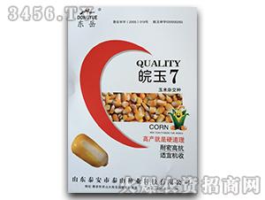 皖玉7-玉米杂交种-泰山种业