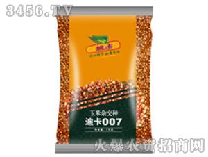 玉米杂交种子-迪卡00