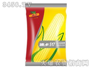 玉米杂交种子-迪卡517-中种国际