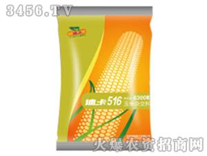 玉米杂交种子-迪卡516-(辽宁)-中种国际